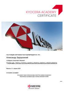 Сертификат специалиста - Александр Задорожный 2020